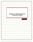 Report on China Electronic Computer Market