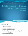 Creating Effective Software Development System