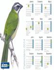 Calendário 2014 Trinca-Ferro