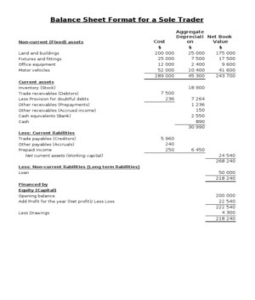 Financial Statement Format For Sole Proprietorship