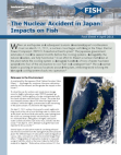 Nuclear Accident in Japan