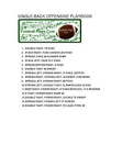 Single Back Offense by Football Plays