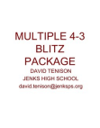 Multiple 43 Blitz Package by David Tenison